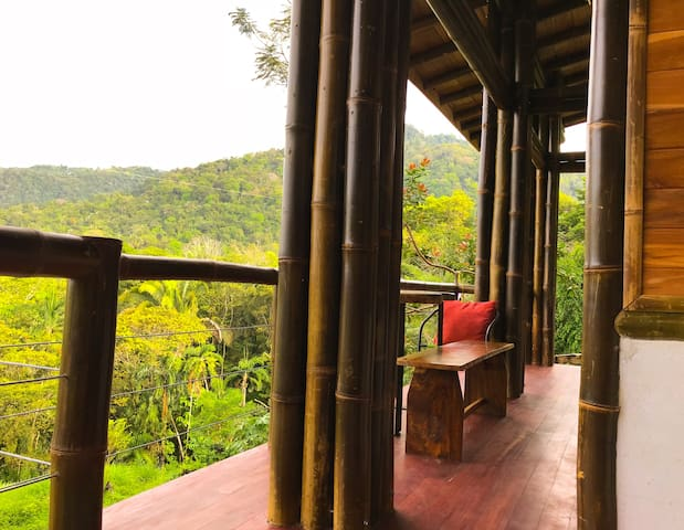 Bambura 2: amazing view, surrounded by nature!