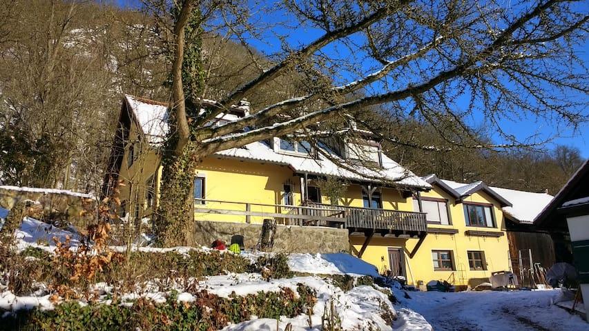 Wohnen an der Donau neben Walhalla - Donaustauf - Departamento