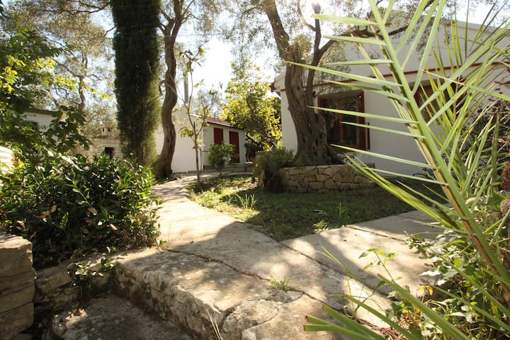 Anna's Cottage near Loggos Village, Paxos - Gaios - Dům