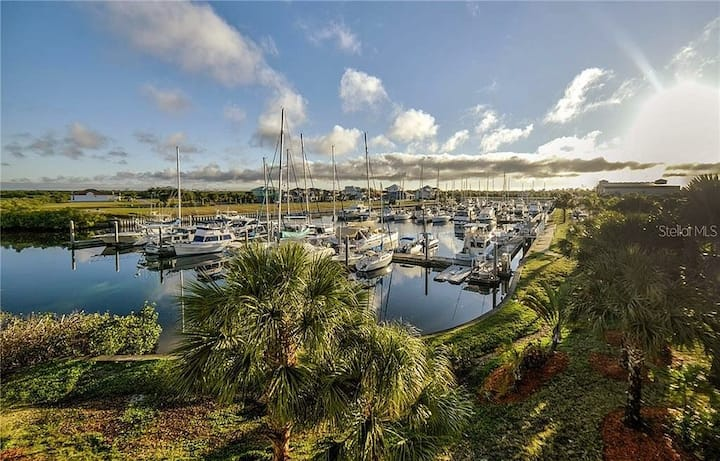 20% OFF November Special@Little Harbor-Tampa Bay