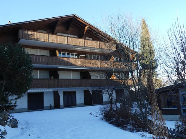 Spacious 6-bed apartment/Ferienwohnung near Gstaad - Zweisimmen - Apartment