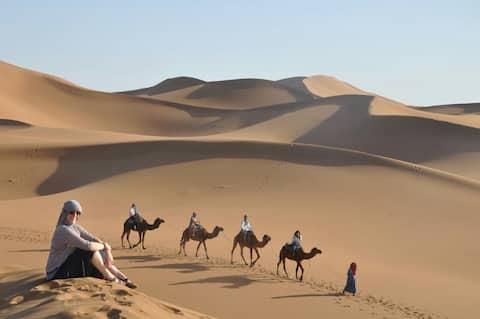 Dar Yaya désert Tours