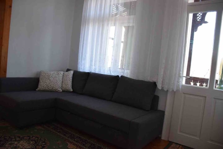 Living room - stretch out couch