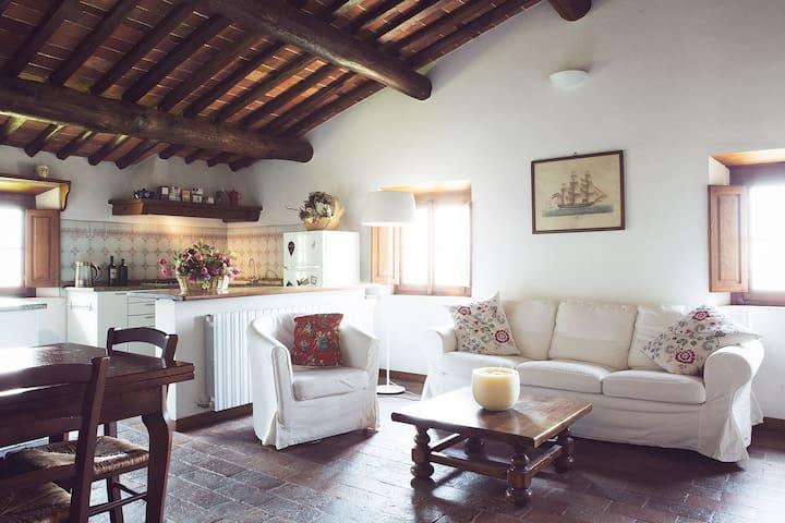 Riccardo House - Camaiore hills - Camaiore