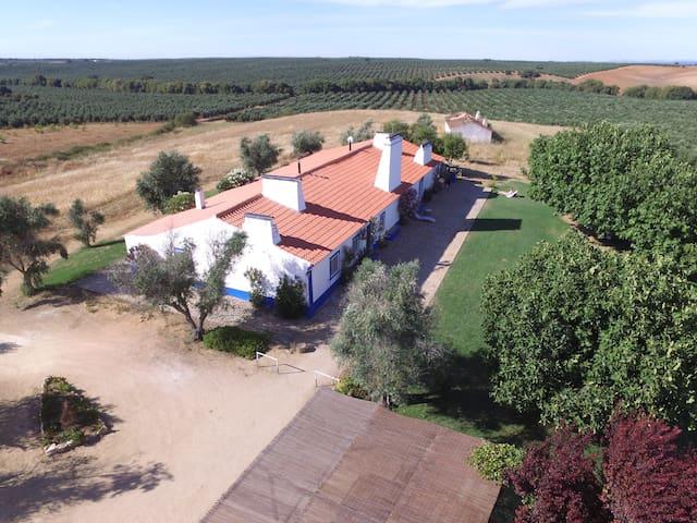 Casa Alecrim - Avis