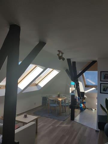Gemütliche Dachgeschosswohnung - Erfurt - Departamento