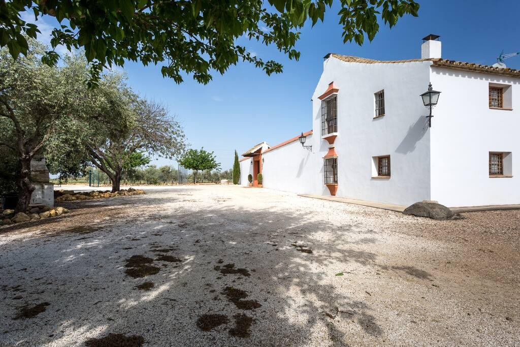 Casa la cig e a con piscina y wifi casas en alquiler en cija sevilla espa a - Casas con piscina en sevilla ...