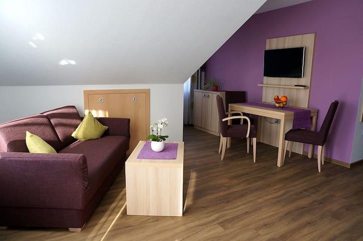 Landpension Wachtkopf-Ferienwohnungen, (Vaihingen an der Enz), Ferienwohnung Trollinger, 47 qm, 1 Schlafzimmer, max. 3 Personen