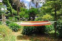 Relax in the hammock.