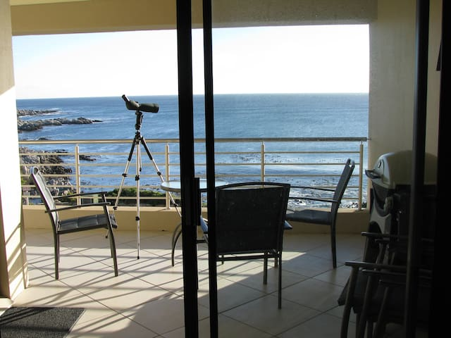 Whale Cove A104 - De Kelders - Appartement