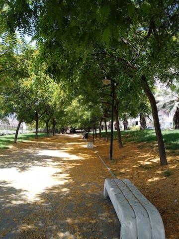Parque cerca de casa.