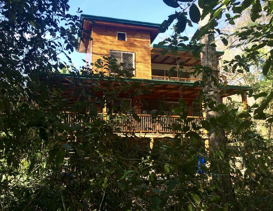 Casanahata our beautiful nosara jungle house houses for Jungle house costa rica