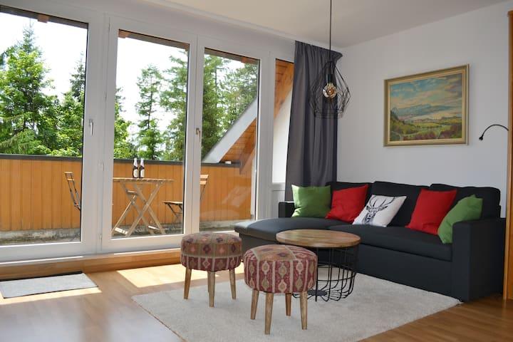 1-Zi-Appartement in Saig inkl. Kurtaxe