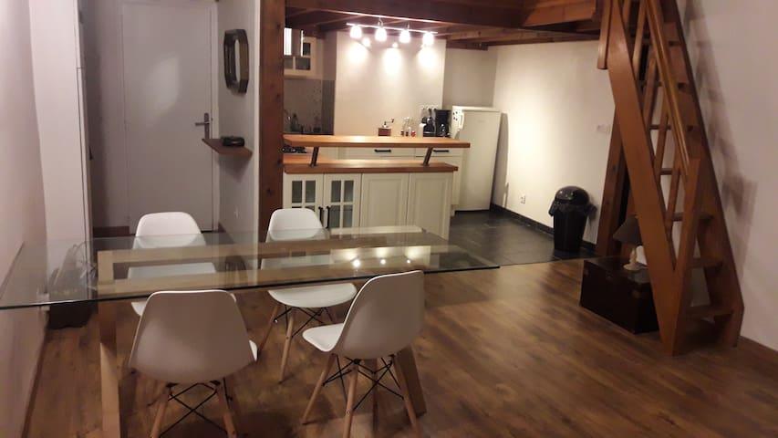 Appartement de charme style Canut avec mezzanine