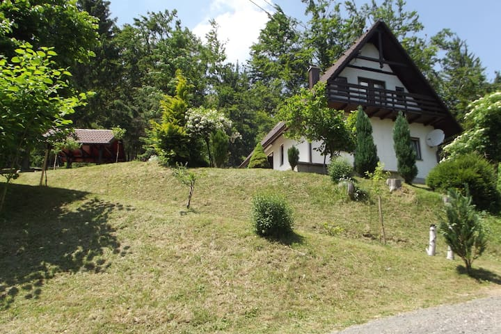Detached house at 100m distance of the lake, surrounded by beautiful nature and with BBQ