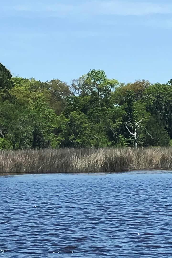 Bird-filled marshes fill the senses