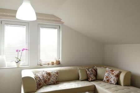MAV-Bright, cozy, spacious flat with a garden 4