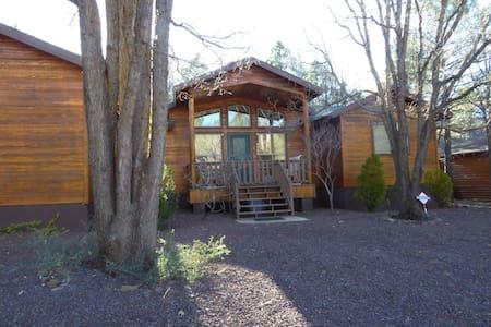 Cozy Home and Backyard - Navajo County