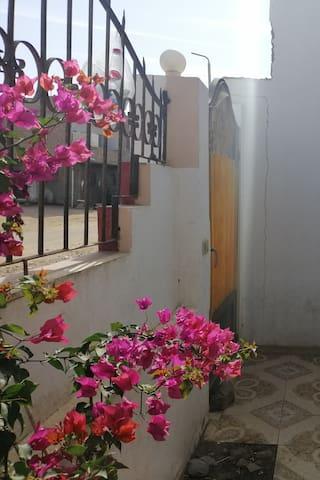 Gharbia house