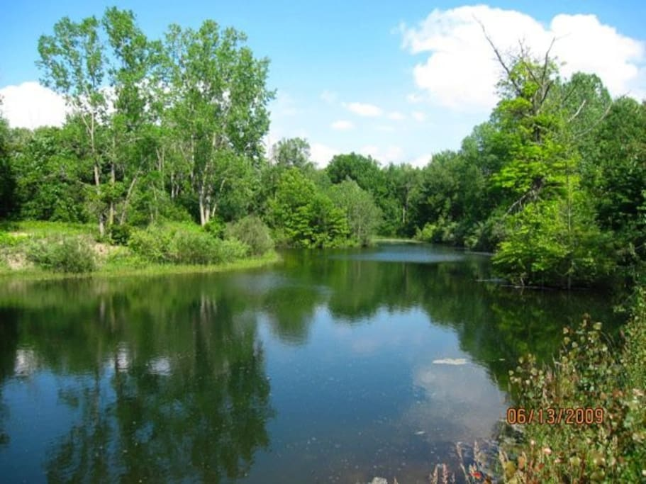Private spring fed 6 acre lake with 4 aeration stations.