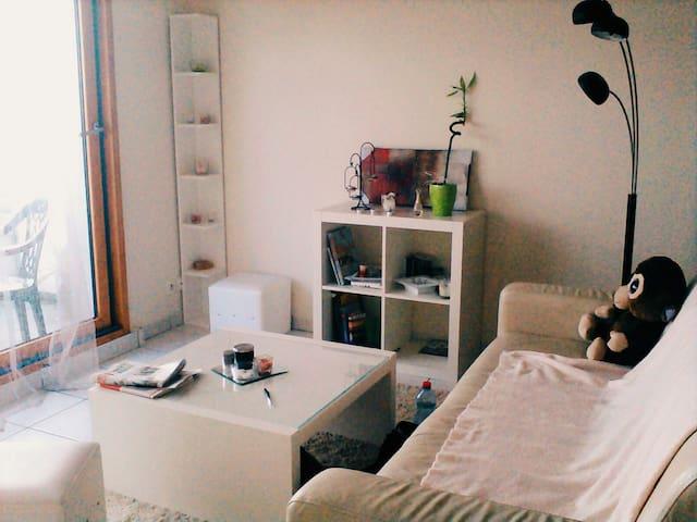Lumineux et accueillant - Romillé - Apartmen
