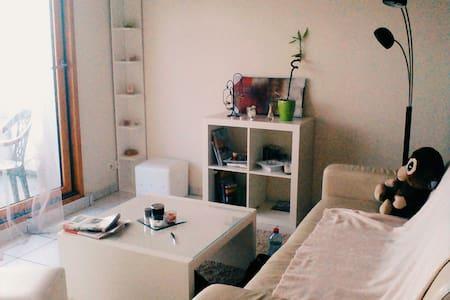 Lumineux et accueillant - Romillé - Apartment