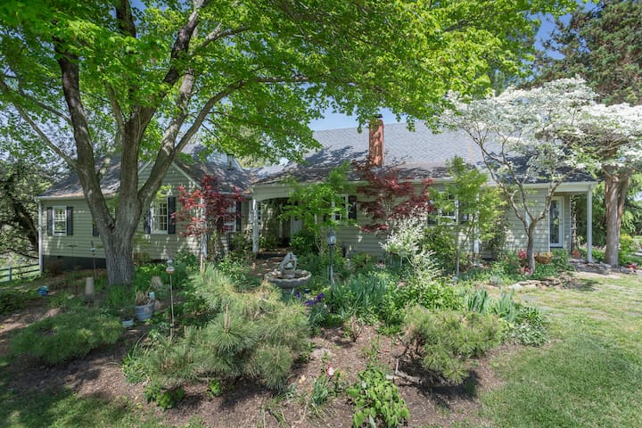 Kismet Cottage | Cville Home with Pool & Mtn Views