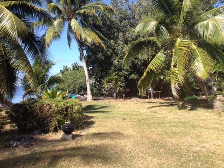 Le charme rustique Polynesien