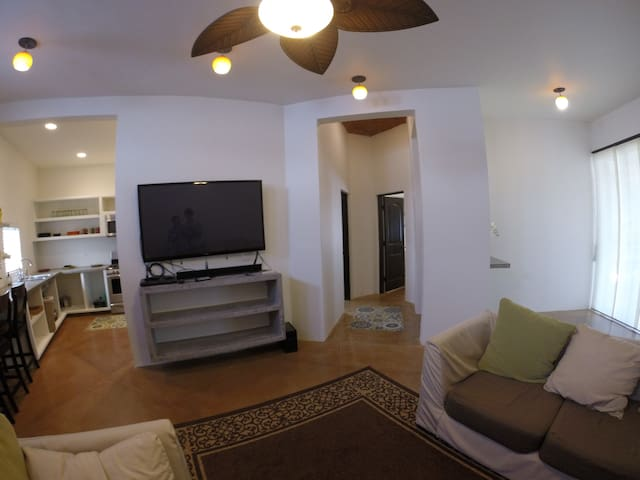 West side living room (view 2)