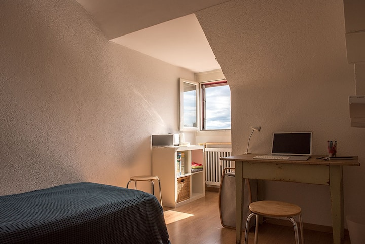 Mansard apartment at Bern Lorraine