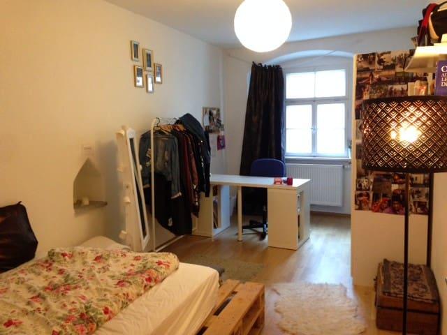 Geräumige Wohnung im Stadtzentrum - Passau - Daire