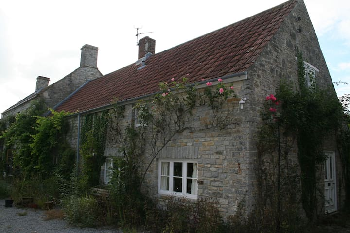 Self-contained annexe on Somerset Levels - Shapwick - Haus