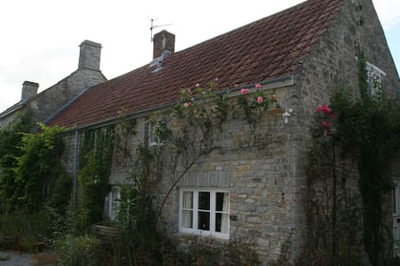 Self-contained annexe on Somerset Levels - Shapwick - House