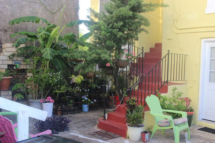 Downtown Courtyard 1 Bdrm Rental