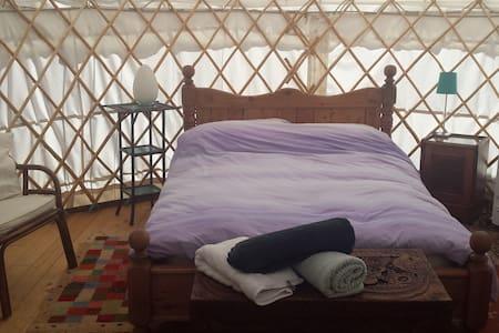 Cosy Yurt. 4 miles from M5 ..nr Glastonbury