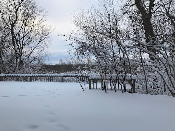 Beautiful studio apartment overlooking Cedar Lake