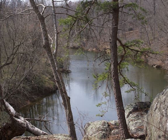 Private suite in the woods on the Rivanna River - Earlysville - Huis