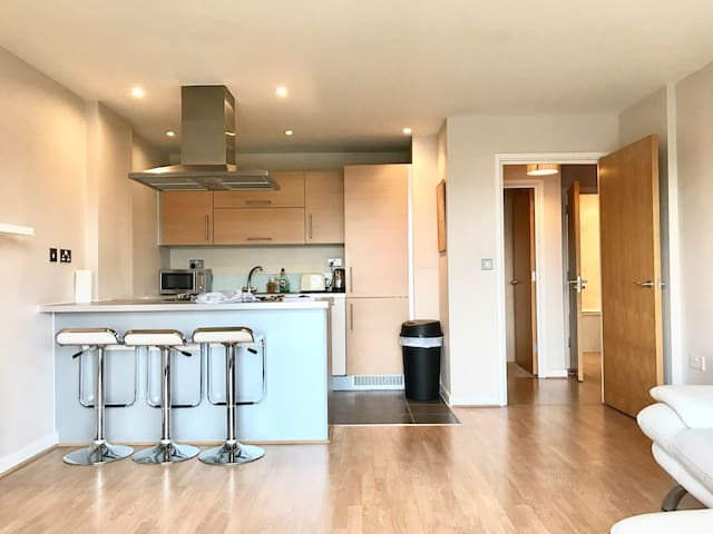 Bright and Modern 2 bedroom flat - Londra - Appartamento