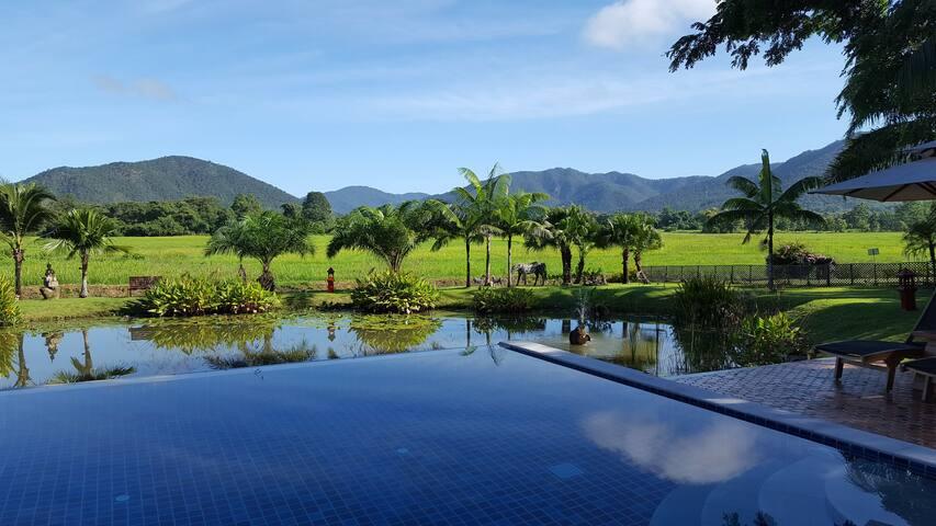 Rice and Zen Boutique Resort - Bamboo Villa - Doi Saket - 別荘