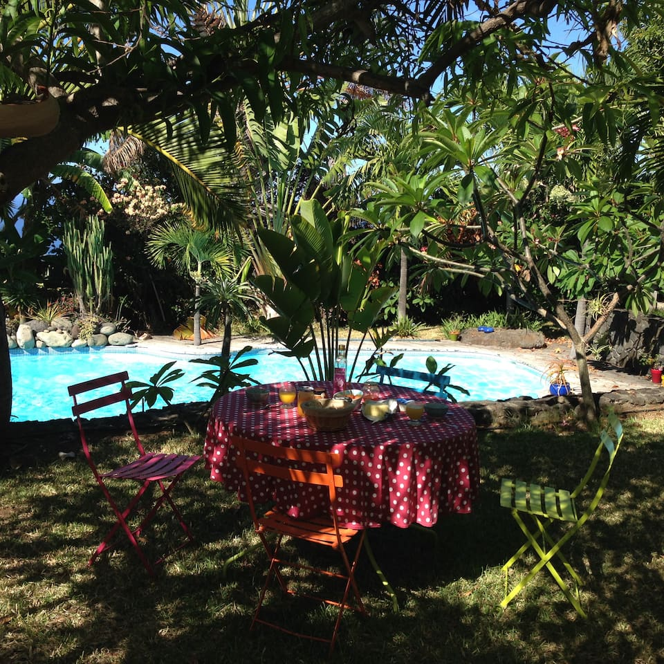 Petit déjeuner dans le jardin tropical