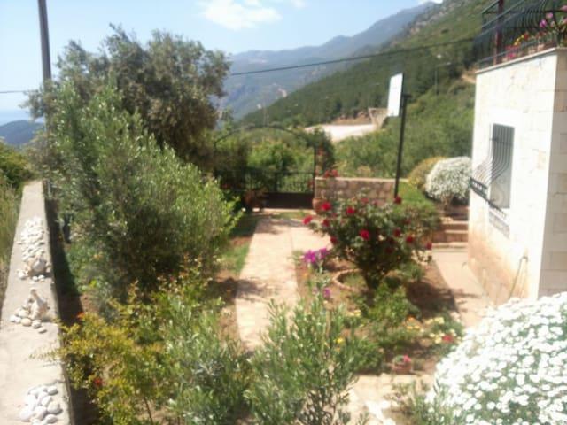 Nice Villa with Garden