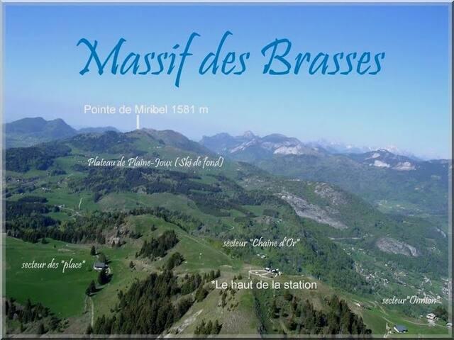 Studio in Les Brasses Ski Statio