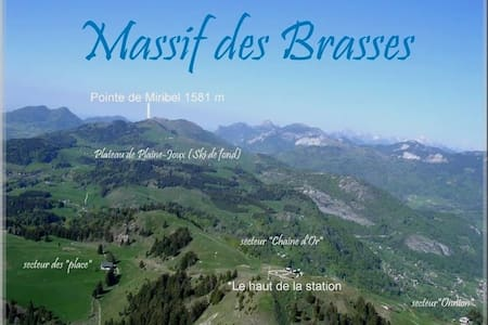 Studio in Les Brasses Ski Statio - Saint-Jeoire - アパート