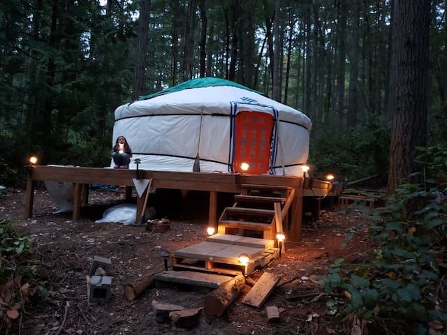 Vashon Island Yurt in the woods