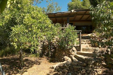 Vedranell - Ibiza - Casa de campo