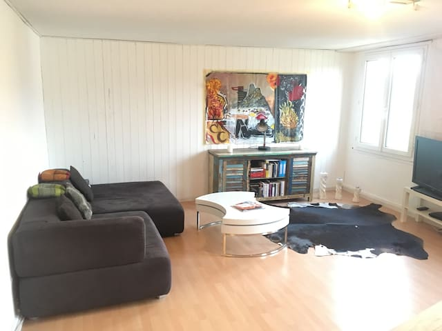 Spacious Appartment - Rosenberg / Uni & OLMA 5 Min