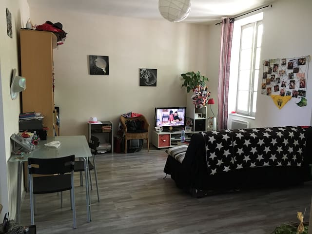 Appartement T2 à 1h de Toulouse! - Daumazan-sur-Arize - Apartment