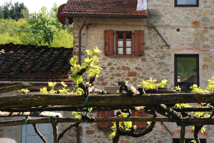 Il Castello nice cottage near Lucca - Bagni di Lucca - Apartment