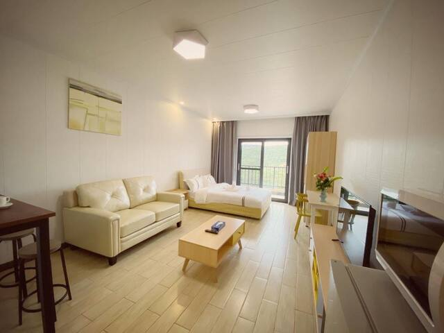 4 stars full serviced luxurious equipped studio