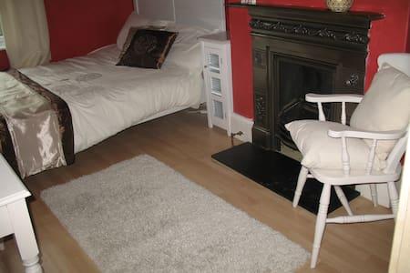 Spacious double room near Richmond - Twickenham - Ház
